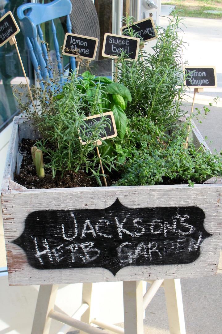 eLOVate herbs