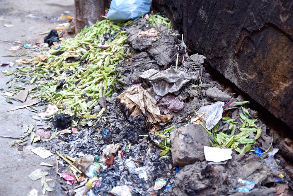 Delhi trash strike