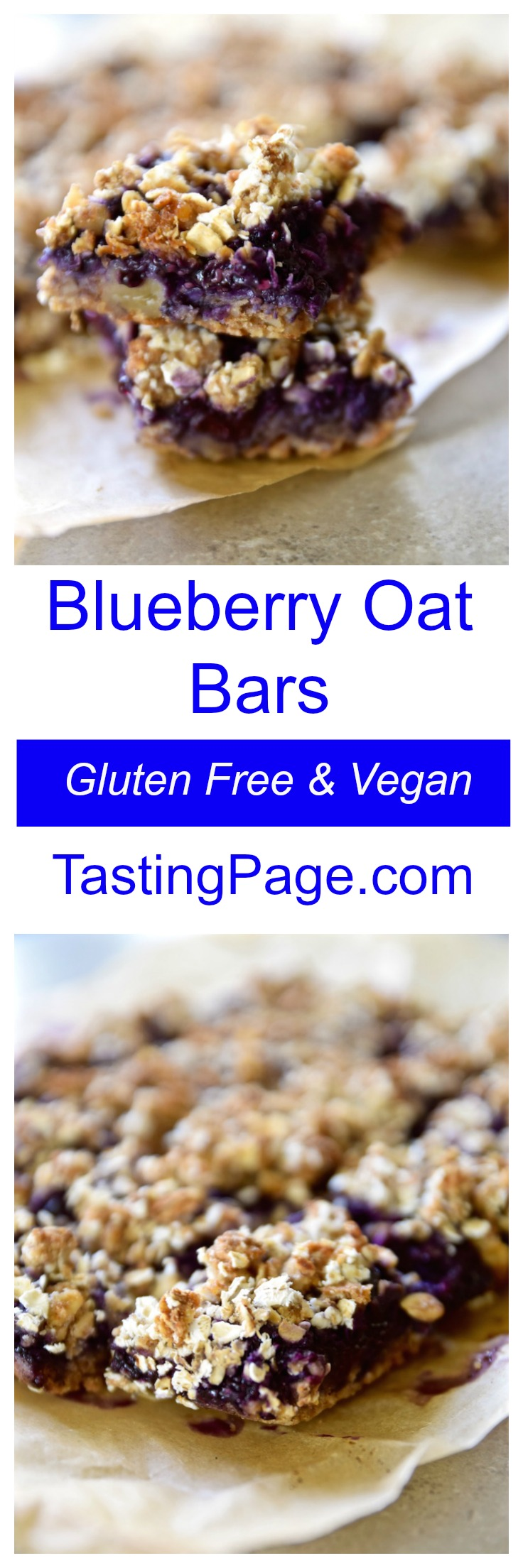 Gluten Free Vegan Blueberry Oat Bars | TastingPage.com