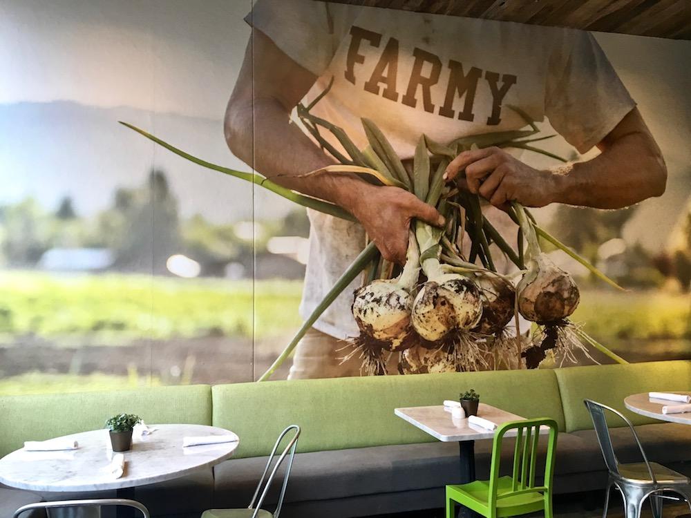 True Food Kitchen organic food.jpg