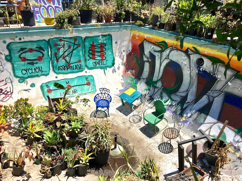 Gangsta Gardener garden pool.jpg