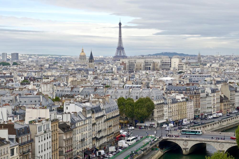Paris views.jpg
