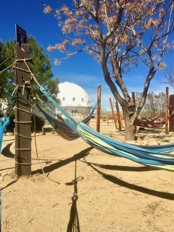 Gravatron hammocks meditate.jpg