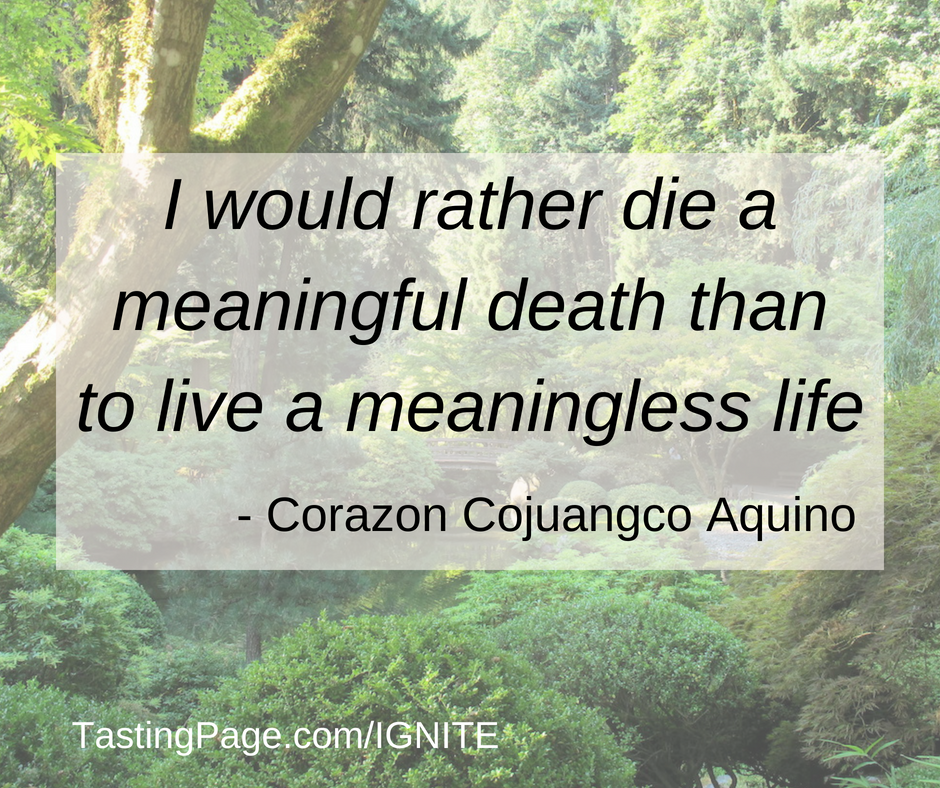 I would rather die a meaningful death than to live a meaningless life