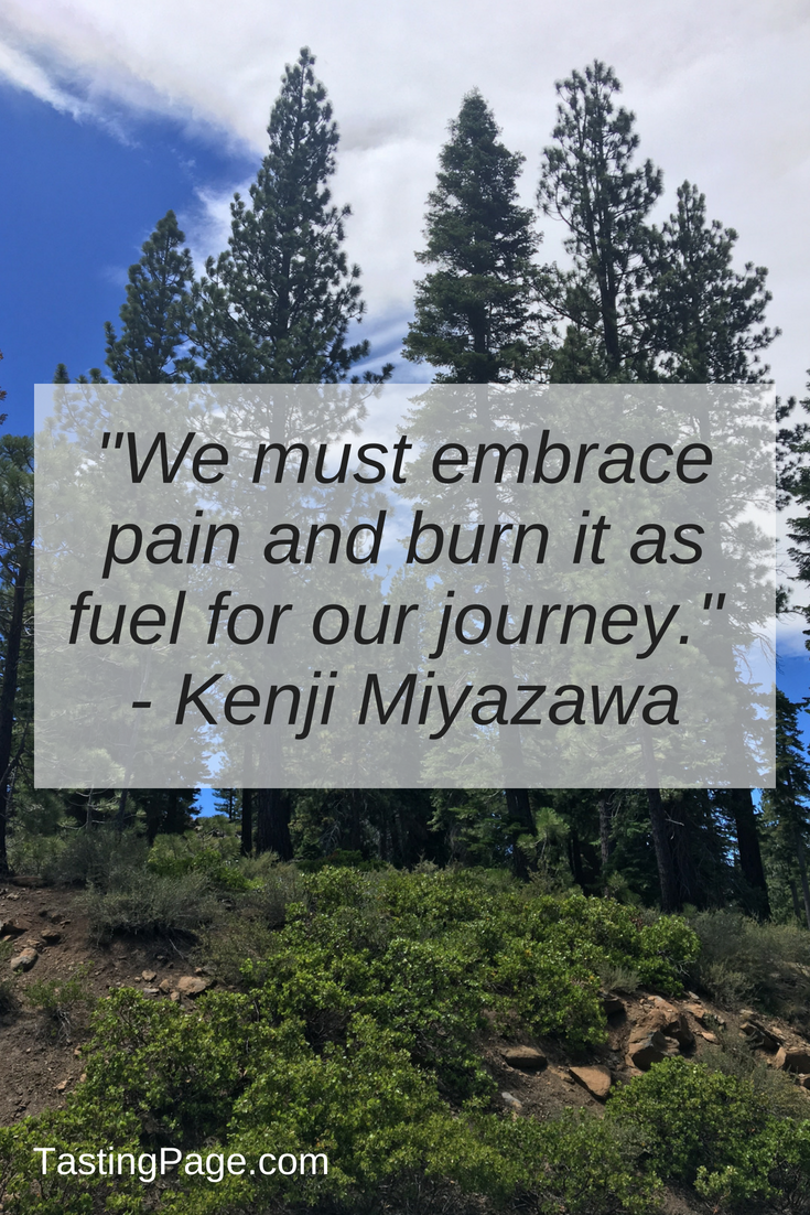 We must embrace pain and burn it as fuel for our journey | TastingPage.com #mentalhealth #selfcare #attitude #perspective
