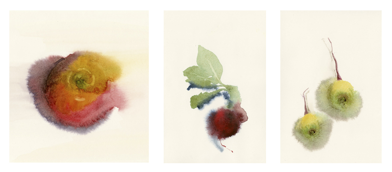 Watercolor Still Lifes ~ from left to right: Apple, Radish, Turnips