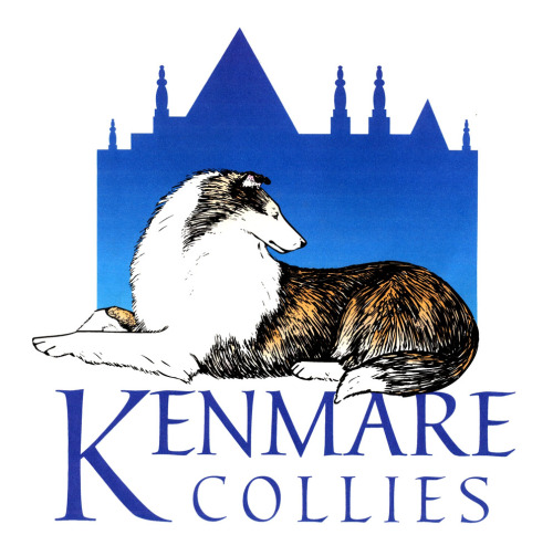 Kenmare Collies - La Canada - Flintridge, CA