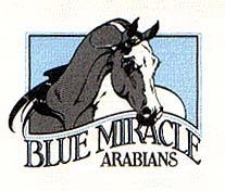 Blue Miracle Arabians - Agua Dulce, CA