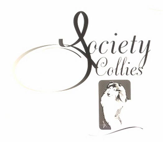 Society Collies ~ Martha Ramer - Riverside, CA
