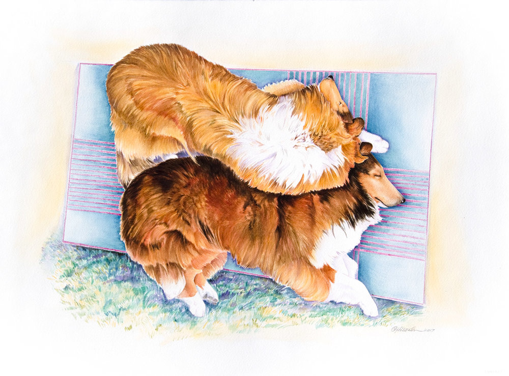 """Tirzah & Sage"" 22x30"" Watercolor ~ Giclee Prints & Cards"