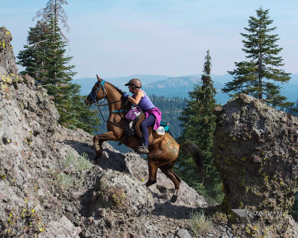 Diana & Khemali'i ~ Cougar Rock 2012 Tevis Cup 100 Mile One Day Ride ~ Photo by Gore/Baylor