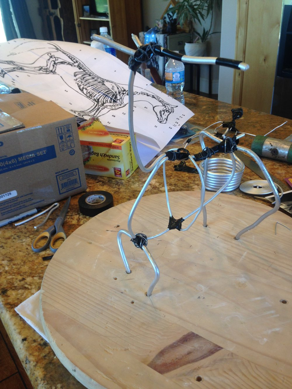 My horse armature.
