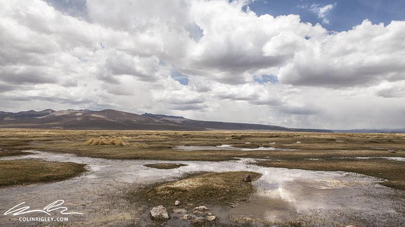 Peru_Colca_Marsh Landscape.jpg