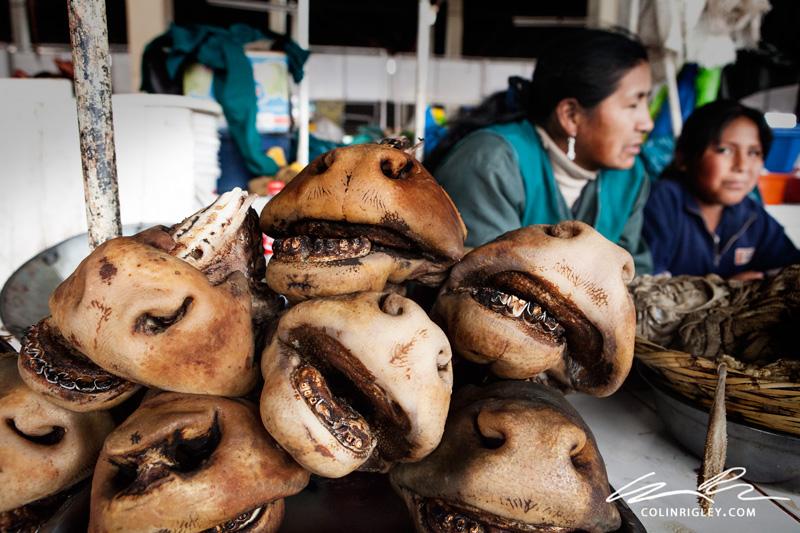 Peru_Cuzco_San-Pedro-Donkey-Mouths.jpg