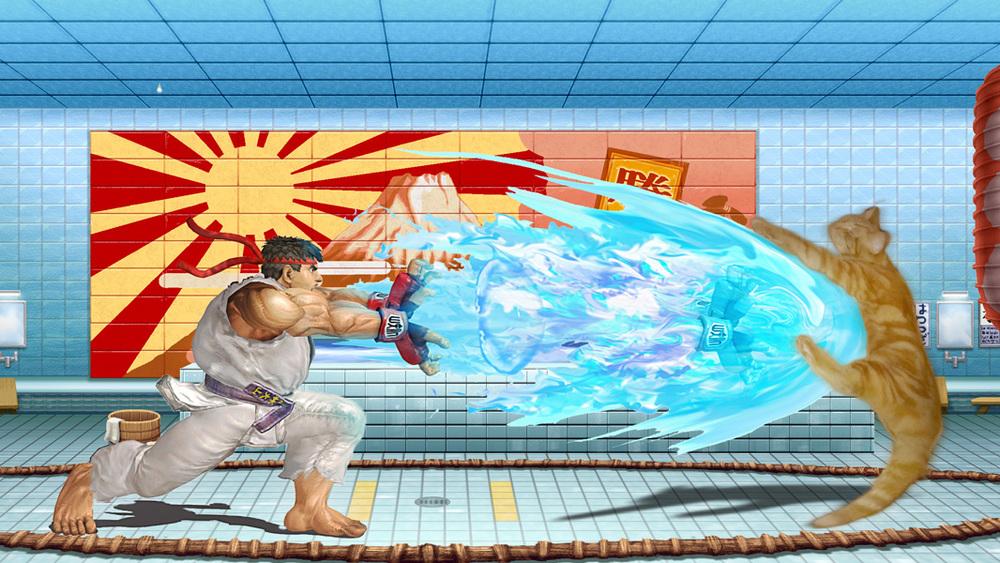 Sleepy-Cat-Street-Fighter.jpg