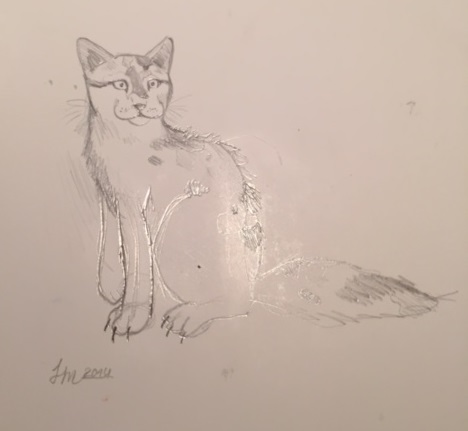 catsketch1.jpg