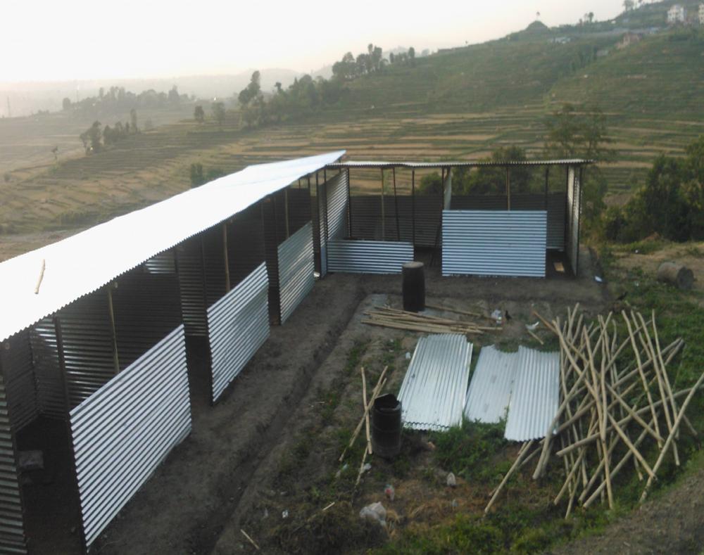 Nepali Tea Restoration Fund-7.png