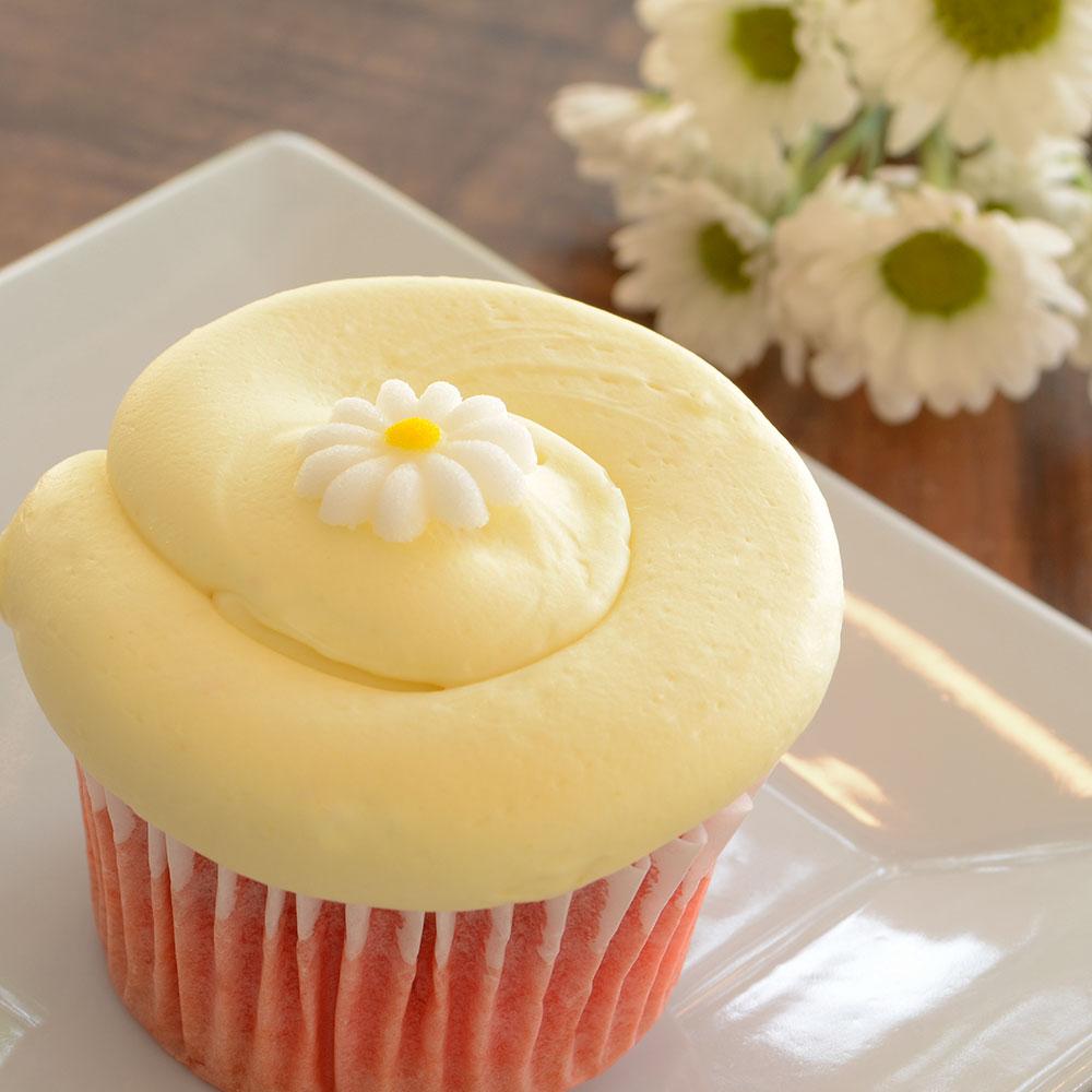 7348-cupcake-medium-square-3.jpg