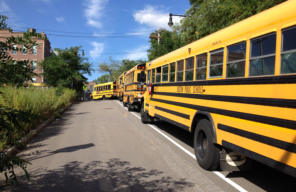 Brooke_buses.jpg