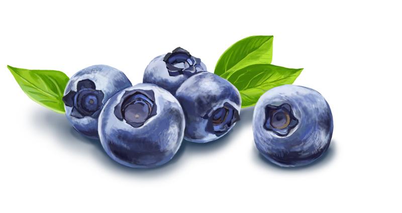 blueberry_final.jpg