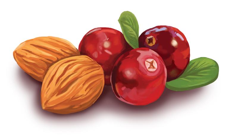 cherry_nut_final.jpg