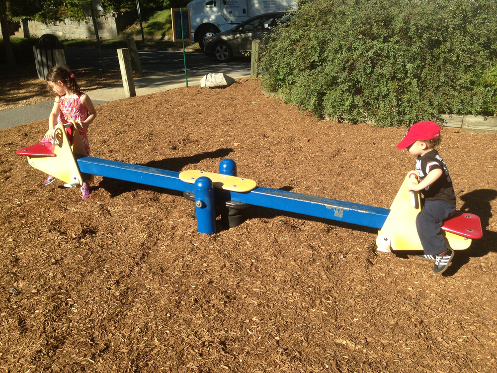 You need two kids for a seesaw, but for a family?