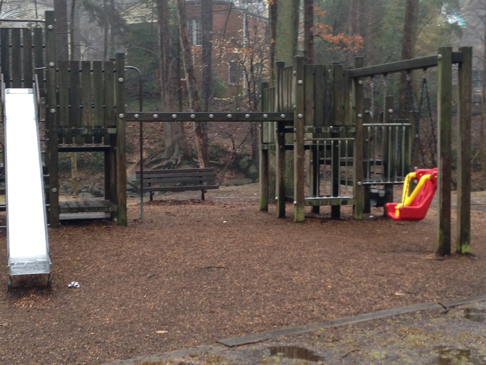 Even a playground looks sad in February.