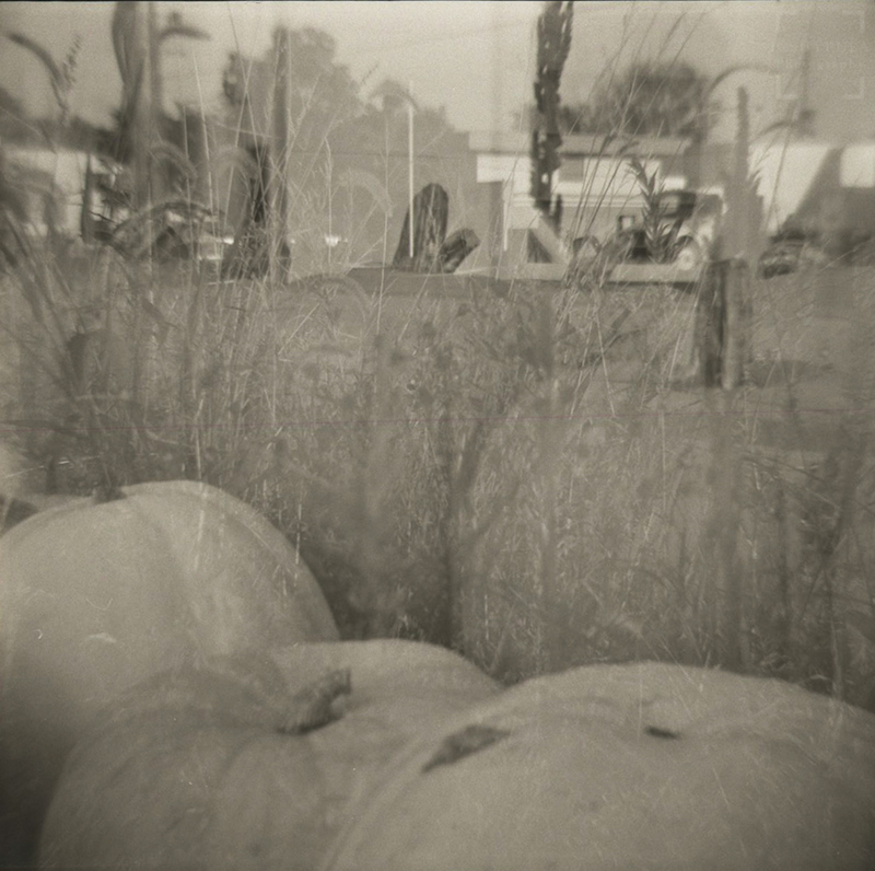 Diana F+ - Ultrafine Extreme 400