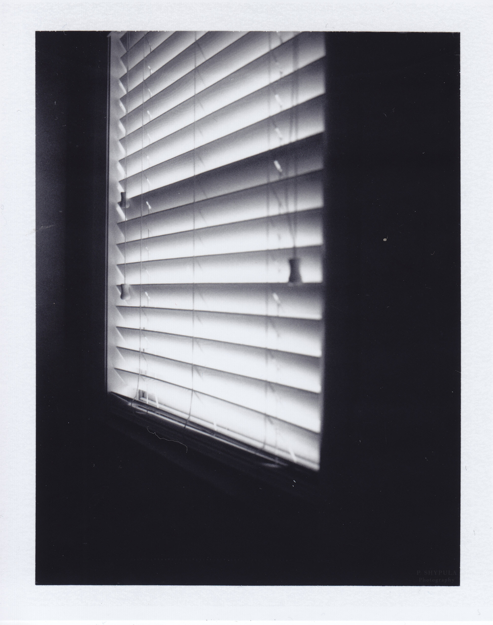 Week 4: Jan 25 - 31   Polaroid  Land 100 +  Fuji Photo Film  FP-3000b