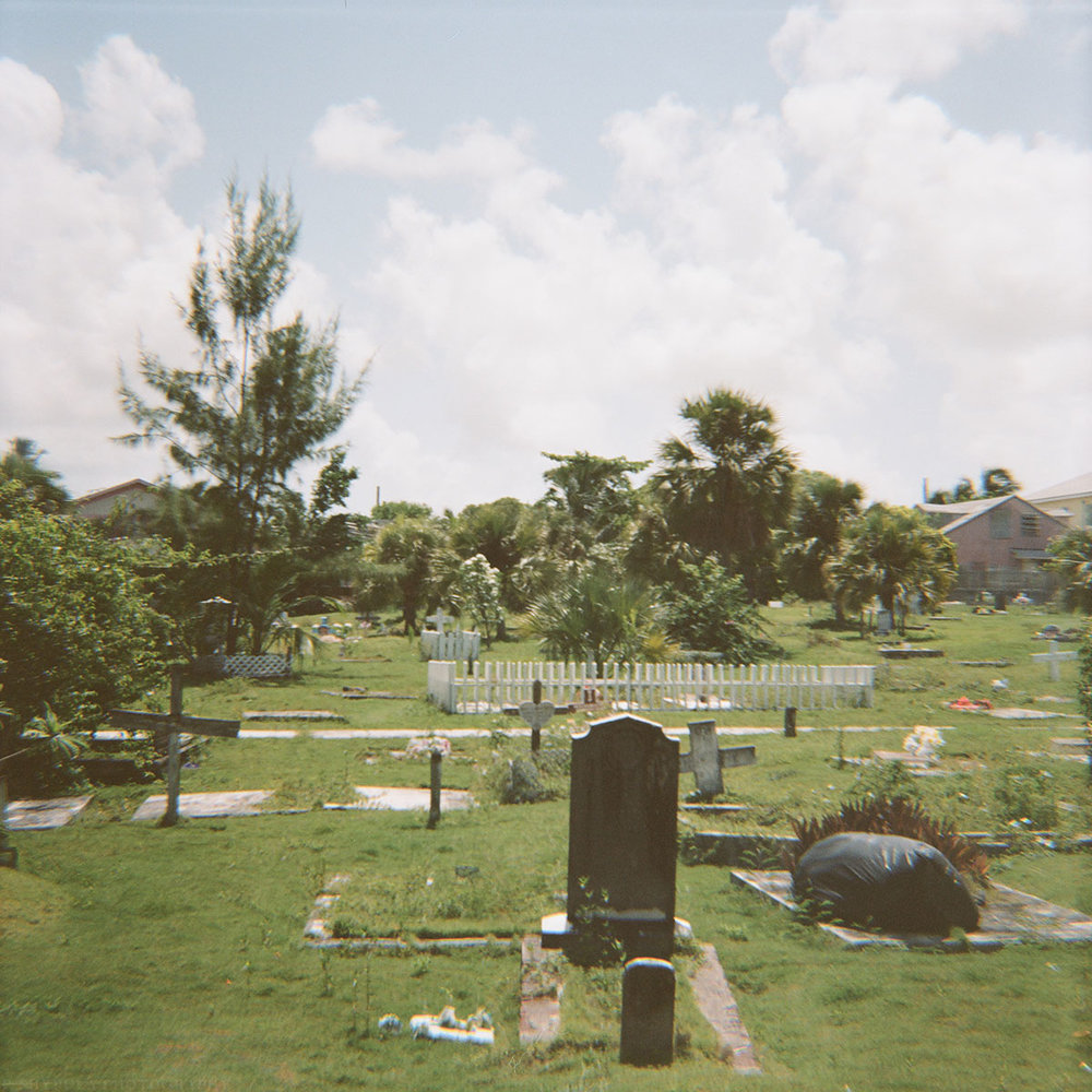 Diana F+ with Expired Kodak Portra 160