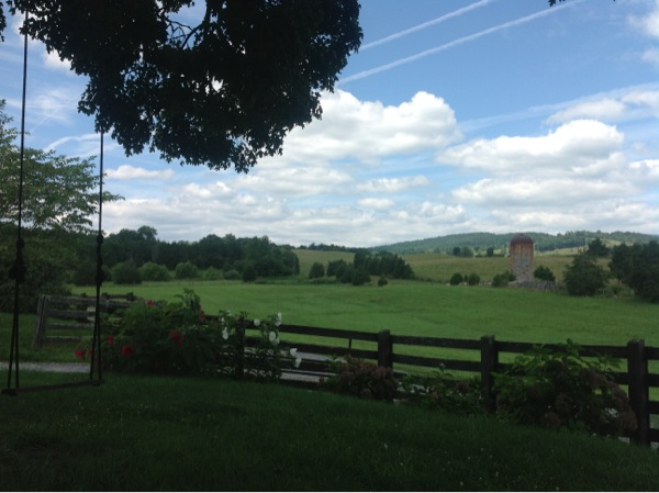 View from Rebecca and Lee's bench swing. Outside of Lexington VA