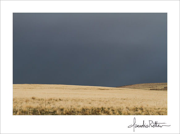 Dark skies,Antelope Island State Park