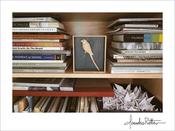Elizabeth's studio bookshelf