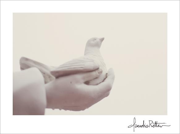 Bird in a hand