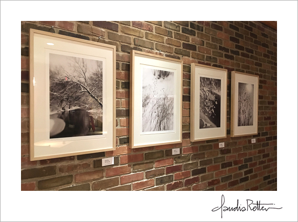 Velvet Winter  exhibit at the Meadowlark Restaurant