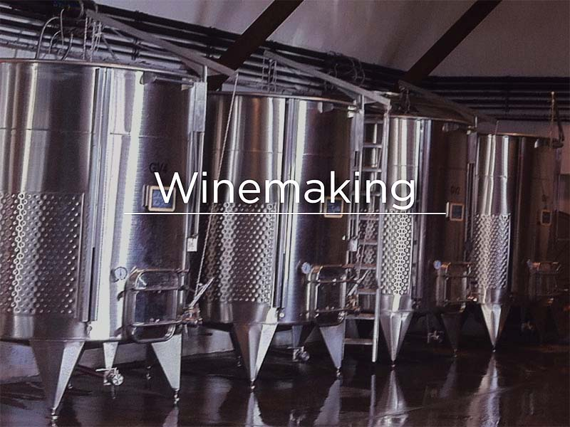 Winemaking800x600.jpg