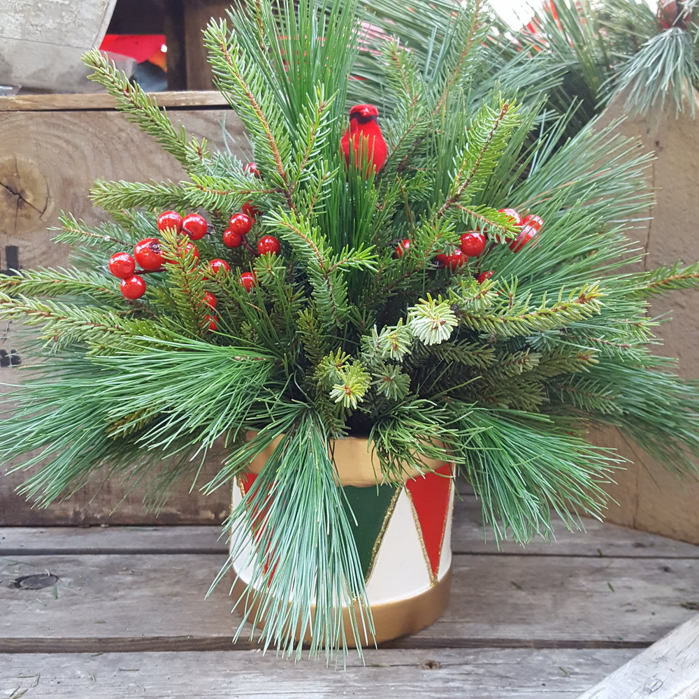 Spruce and White Pine Tips with red berries and a small cardinal.