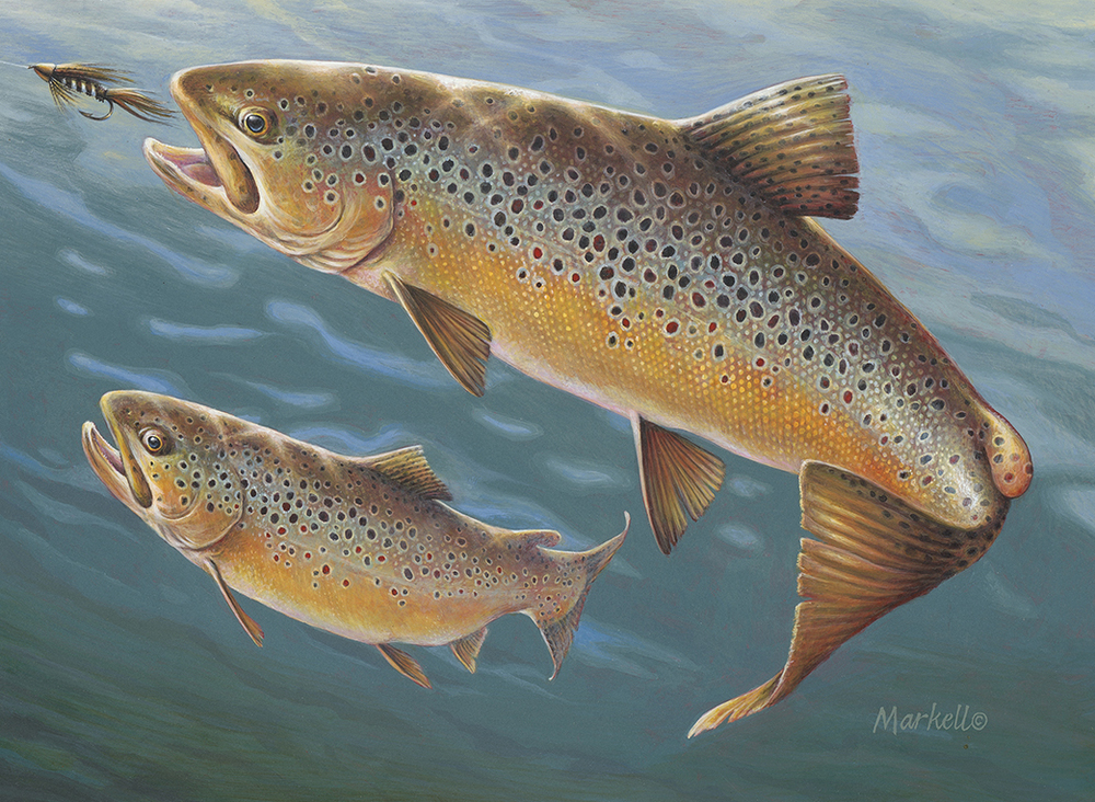 2016 Delaware Trout Stamp