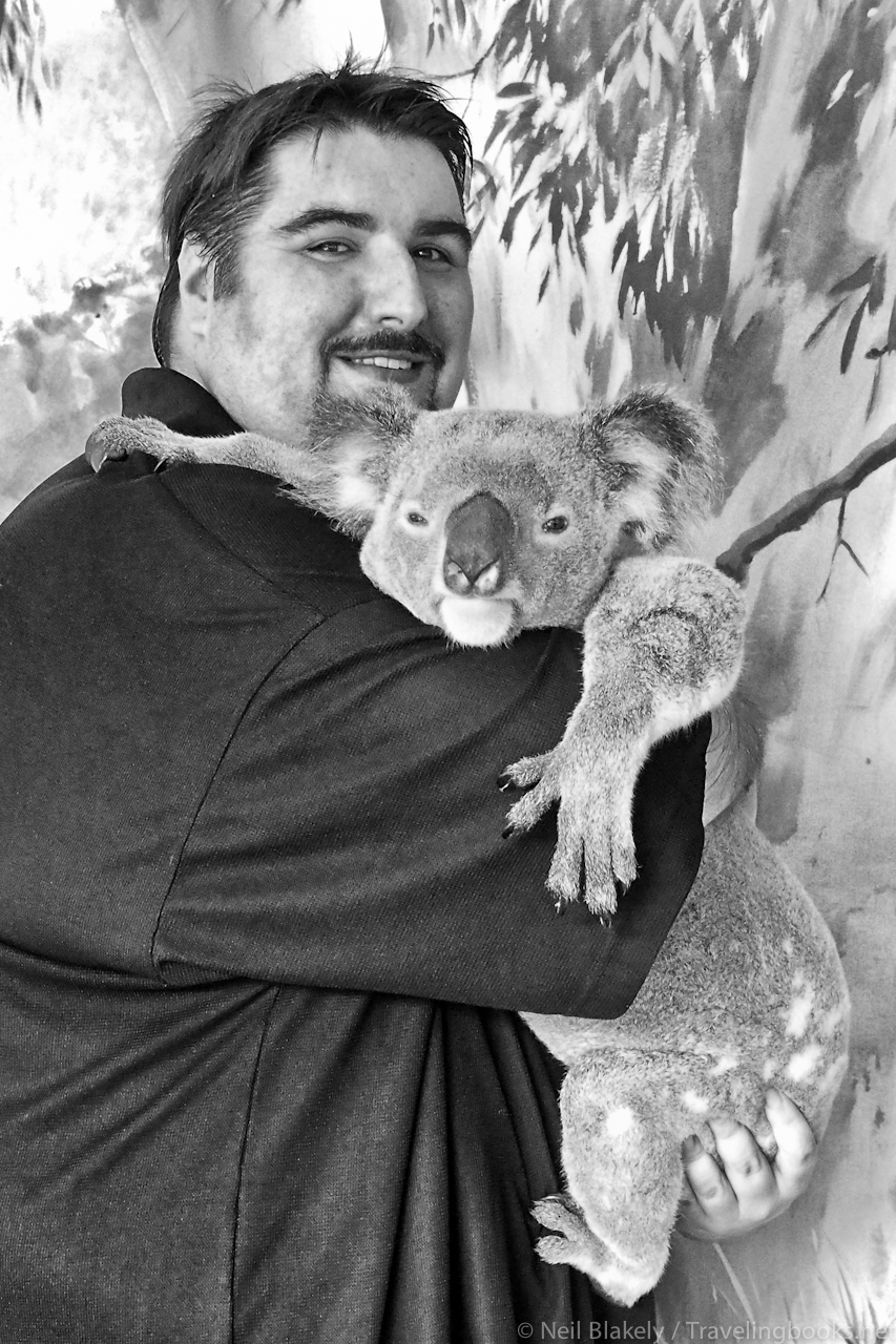… the weird creature in the photo is. Hogan the Koala on the other hand, looks bored out of his little Koala mind.