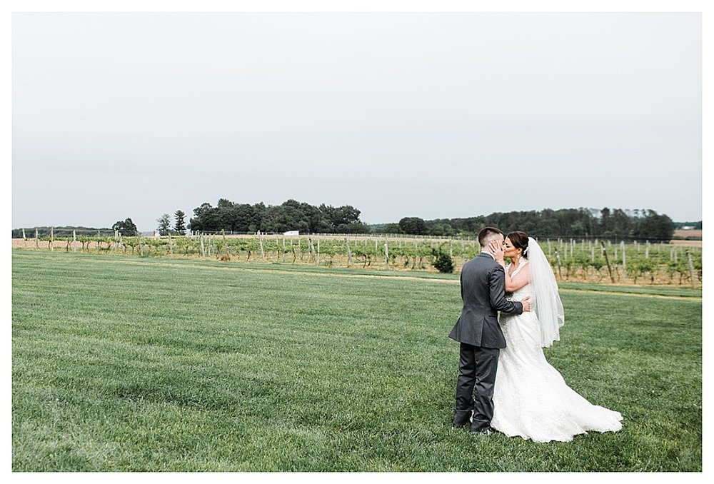 York_pa_Naylor_wedding_erinelainephotography_0390.jpg