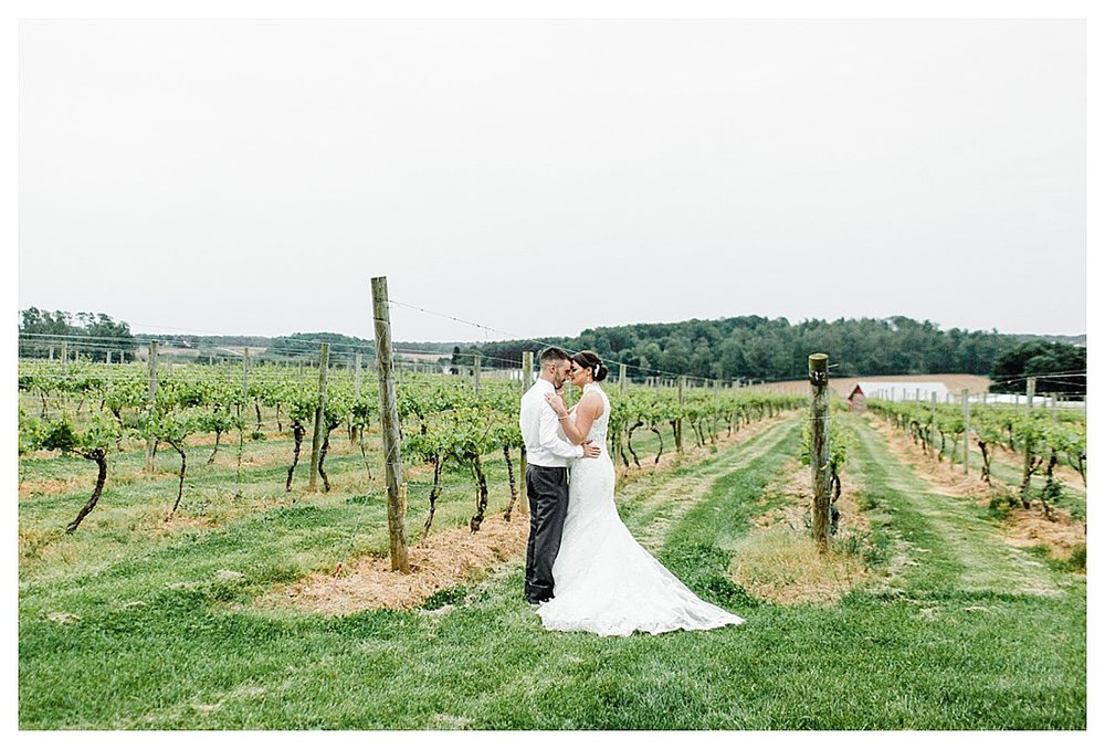 York_pa_Naylor_wedding_erinelainephotography_0426.jpg