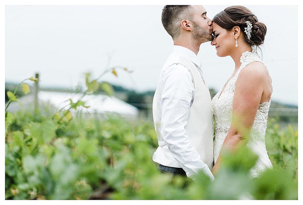 York_pa_Naylor_wedding_erinelainephotography_0428.jpg