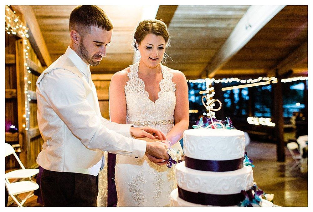 York_pa_Naylor_wedding_erinelainephotography_0433.jpg