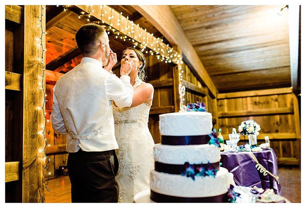 York_pa_Naylor_wedding_erinelainephotography_0434.jpg