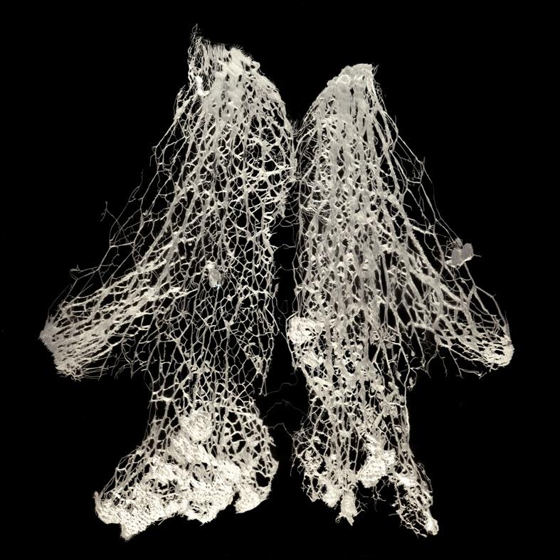Pulmones, 2011