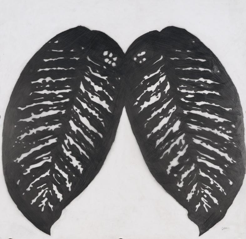 Pulmones, 1997