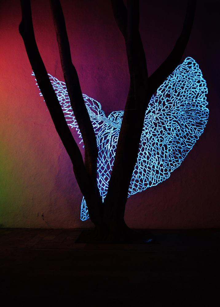 Luz Púrpura en La Noche, 2013