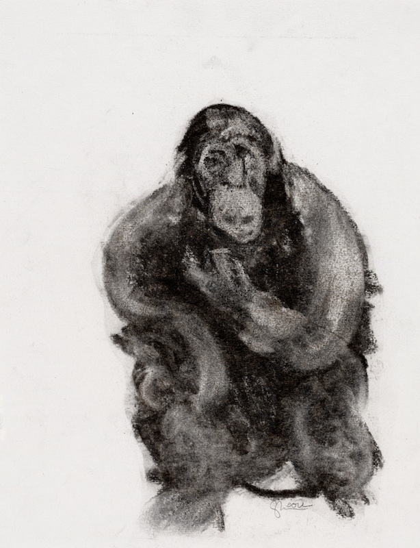 Chimp sketch 6, 2006