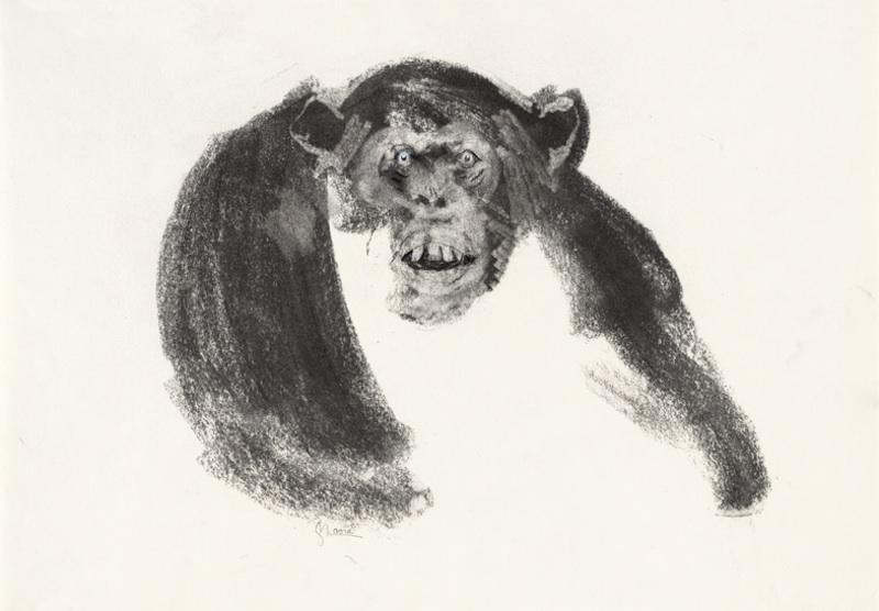MIEDO (FEAR), 2006