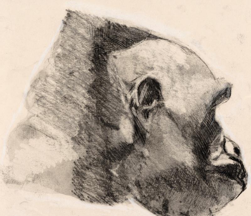 PERFIL DE GORILA (GORILLA PROFILE), 2006